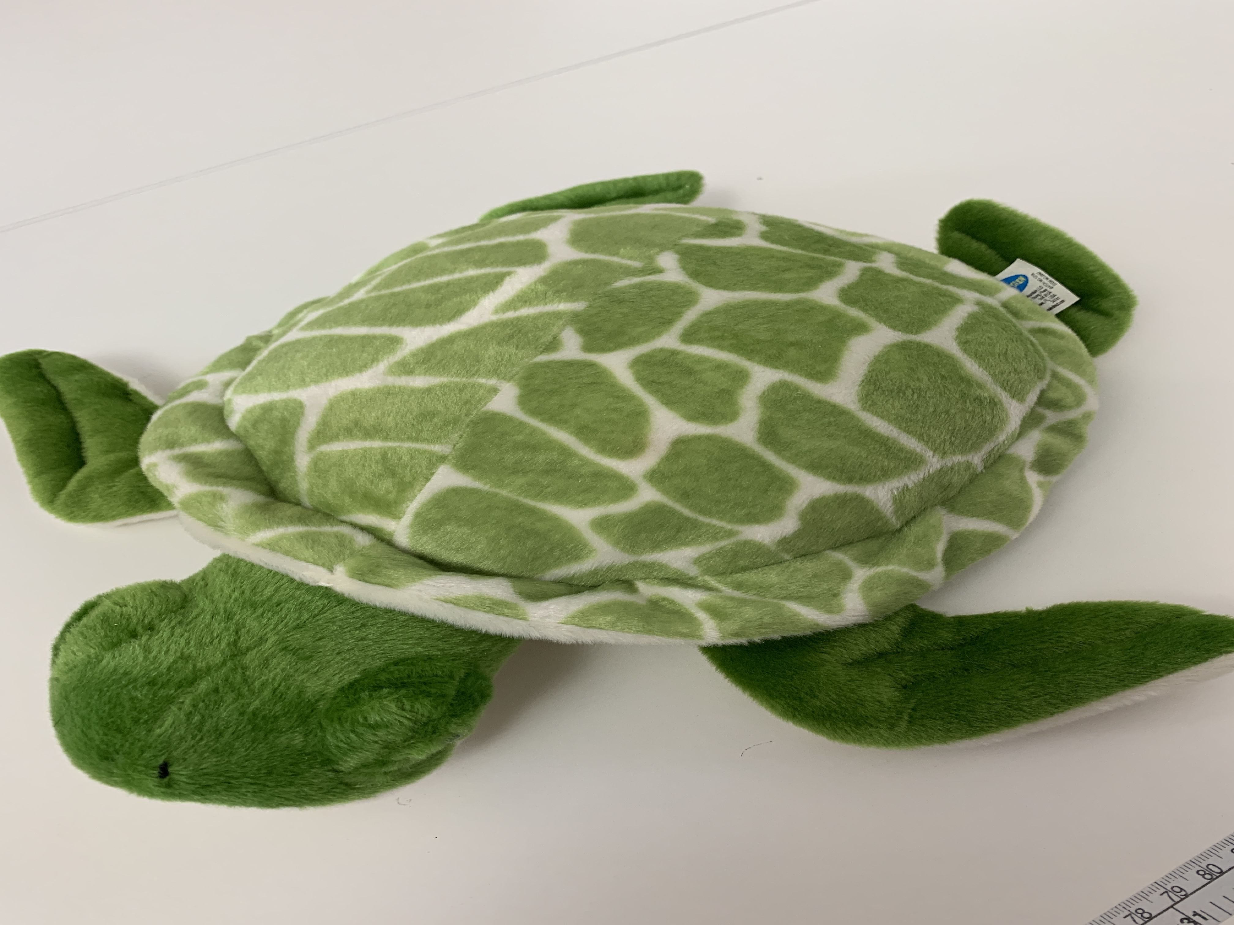 Weighted Lap Turtle 16